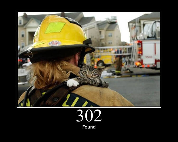 An illustration of the 302 HTTP status code (Found) showing a cat carried by a firefighter