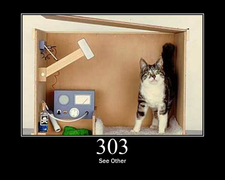 http statuscode 303 as a cat picture